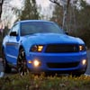 Puzzles Ford Mustang V6